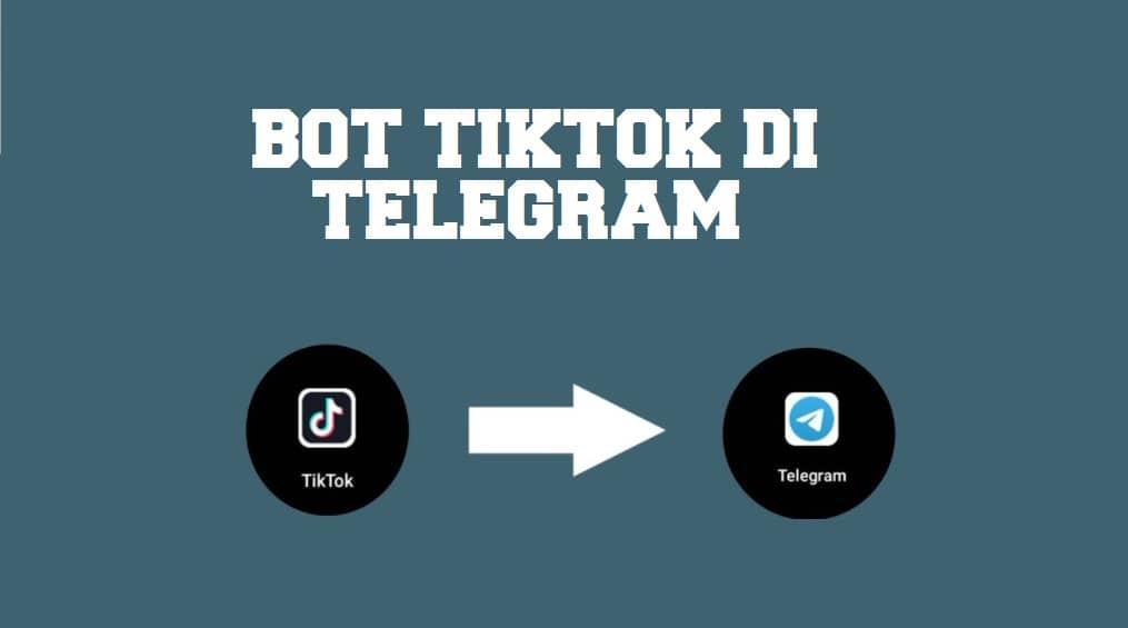 Bot Tiktok Telegram, Download Video Tanpa Watermark