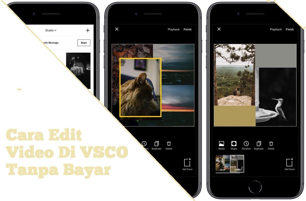 Cara Edit Video Di VSCO Tanpa Bayar